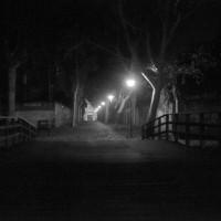 Irmin Damm Nuit
